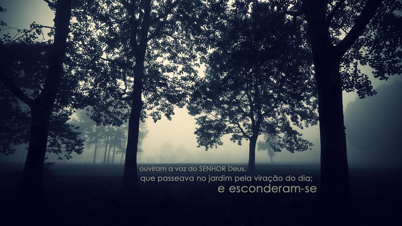 wallpaper cristao hd ouviram voz Senhor passeava jardim viração dia esconderam-se árvores neblina_1366x768