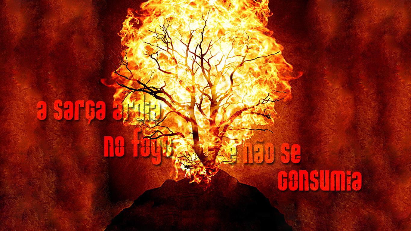 wallpaper cristao sarça ardia no fogo e não se consumia_1366x768