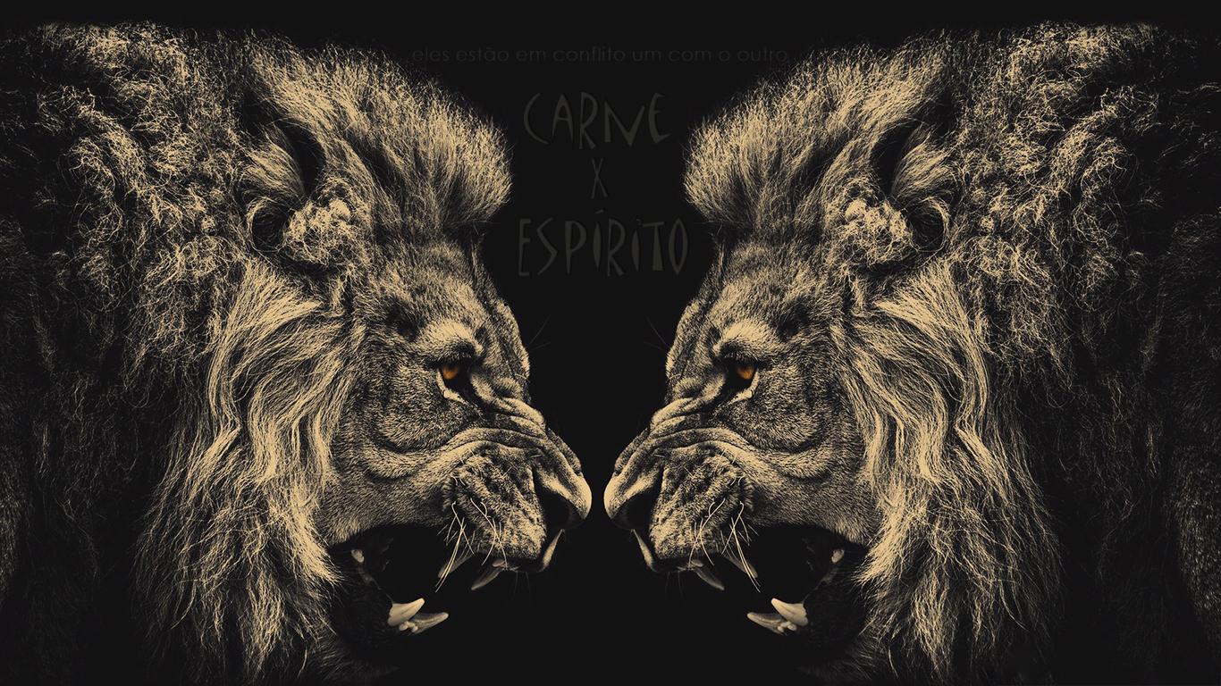wallpaper cristao hd carne Espírito estão conflito um com outro leões_1366x768