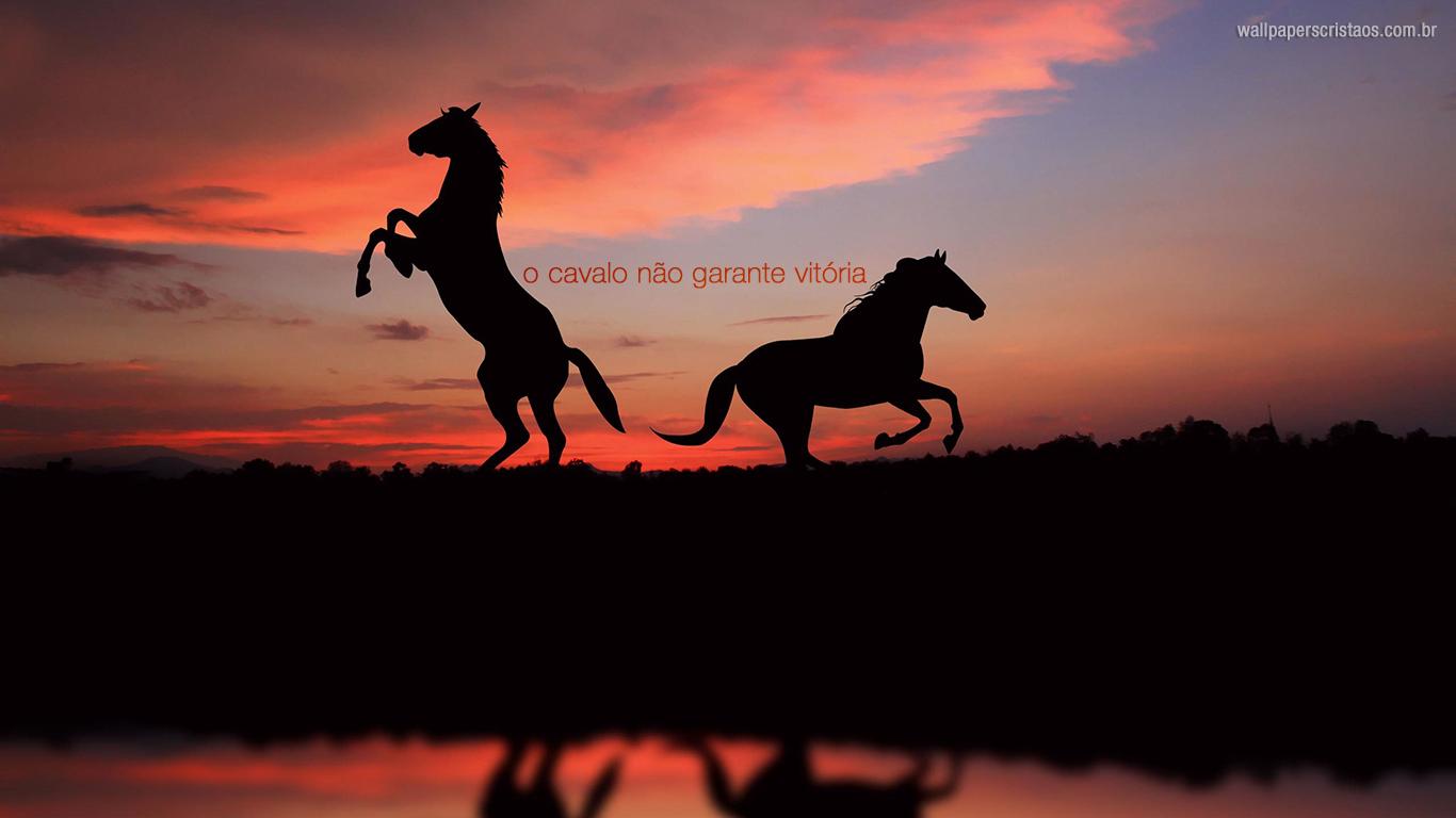 wallpaper cristao hd cavalo não garante vitória_1366x768