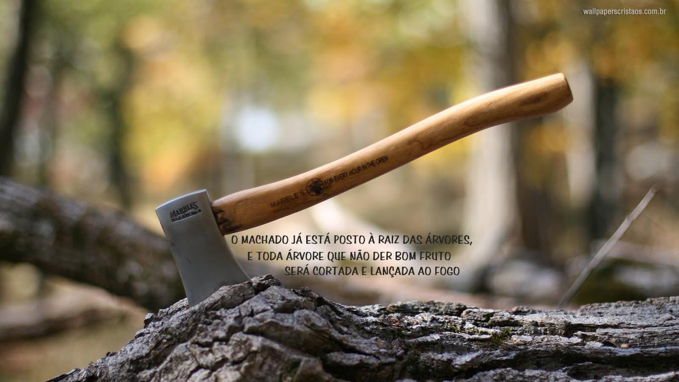 wallpaper cristao machado está posto à raiz das árvores_1366x768